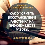 Legal advice Kiev