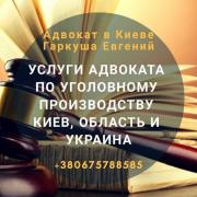 Legal assistance of a lawyer in criminal cases