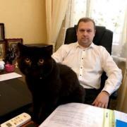 Traffic accident lawyer in Kiev. Lawyer services in Kiev